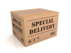 livraison speciale - port en sus